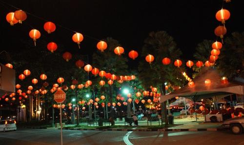 Lanterns Spring to Life