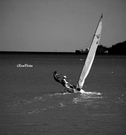 Sailing In Black & White